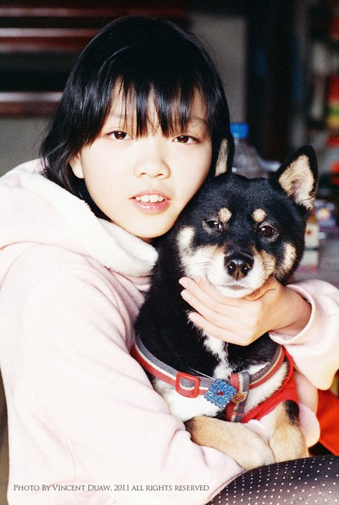 寵物狗照片