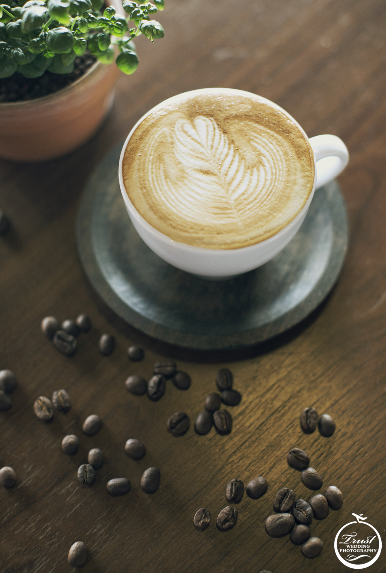 咖啡攝影師