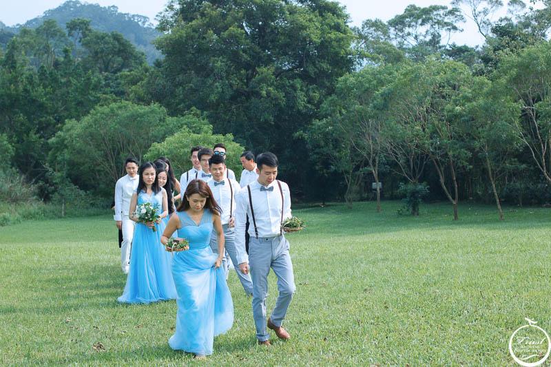 草地婚禮進場