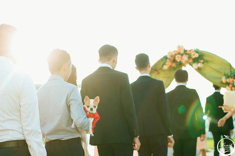 台中莊園婚禮