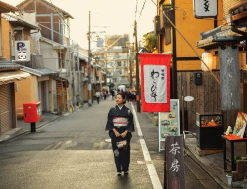 京都風景攝影|京都攝影景點|鴨川風景攝影作品|日本風景照推薦